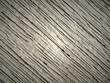 altes Holz, Nahaufnahme