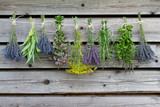 Fototapeta Herbs drying on the wooden barn in the garden