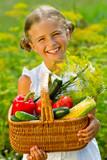 Vegetable garden - lovely girl with picked vegetables in basket