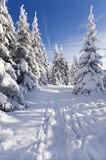 Fototapety Winterzeit