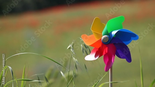 Colorful windmill in a field of wheat