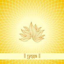 Lotusbloem, Boeddha, Boeddhisme, Zen, India, Azië