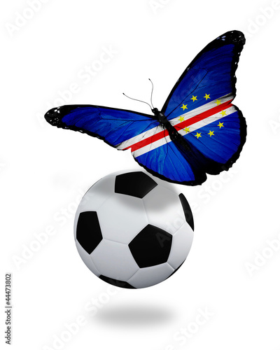Concept - butterfly with New Zealand flag flying near the ball,