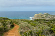 Path with beautiful sea view, Cape of Good Hope, South Africa