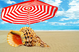 umbrella sea clouds shell