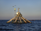 Italy, Sicily, Mediterranean sea, aquaculture nets poster