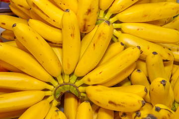 Bunch Of Organic Ripe Bananas
