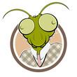 grasshopper mantis head