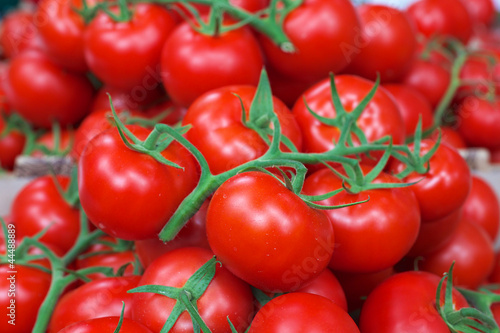 Vine Red tomatoes