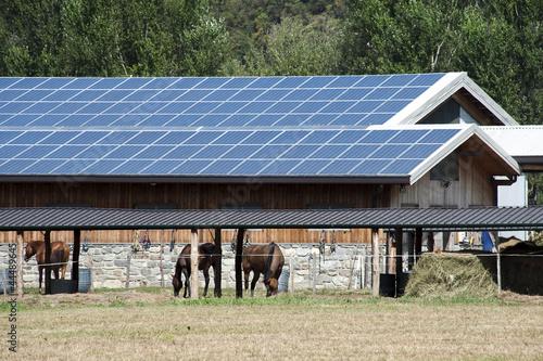 Solar panels farm - 44489645