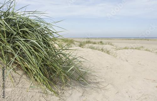Fototapeten,kleinkariert,insel,strand,sand