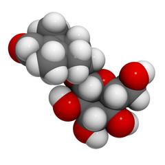 Picrocrocin (saffron taste) molecule, chemical structure
