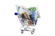 Euros im Einkaufswagen