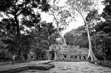 Eingang zum Ta Prohm Tempel, Kambodscha