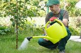 Gärtner mit Gießkanne