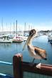 Leinwandbild Motiv Monterey -   Fisherman's Wharf