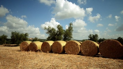 tuscany field with hay bales