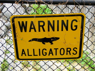 Warning Alligators