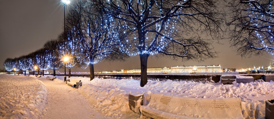The trees in the christmas illumination, St-Petersburg, Russia