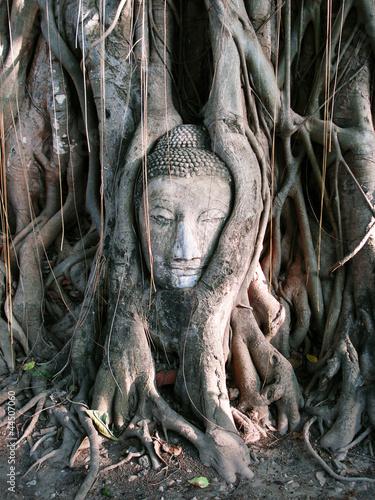 Fototapeten,verehrung,thailand,telly,steine