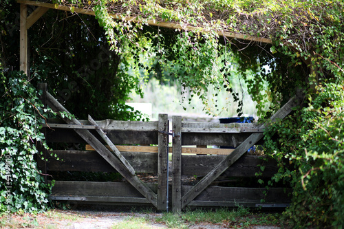 Wooden adventurous garden gate