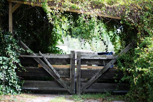 Wooden adventurous garden gate