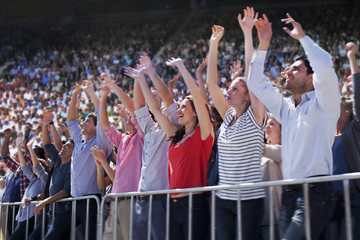 Cheering crowd in stadium
