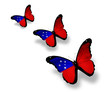 Three Samoa flag butterflies, isolated on white