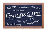 Gymnasium  #120828-008 poster