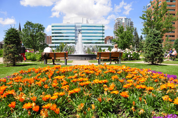 An urban park in Calgary