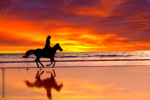 Silhouette of  girl skipping on a horse  on a sunset