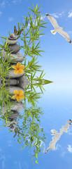 concept nature zen