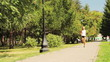 gir running