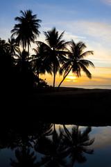 sunset over Caribbean Sea, Turtle Beach, Tobago