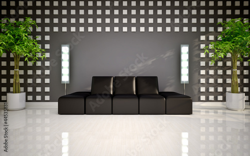 modern interior with black sofa