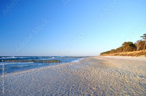 Beach - 44536424