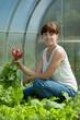 woman picking radish