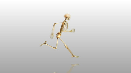 Runing skeleton W/reflection & also loopabable