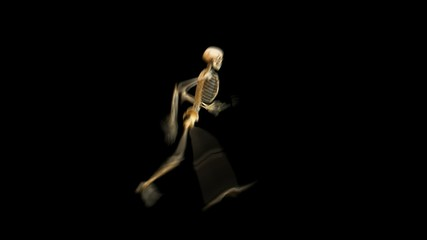 Walking skeleton w/alpha channel & also loopable