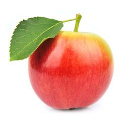 Single summer apple