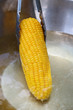 Pick up corn boil
