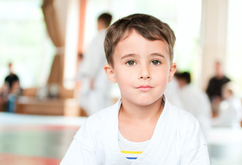 Portrait of karate boy training in sport hall