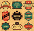 Vector set. Vintage labels. Grunge background     .