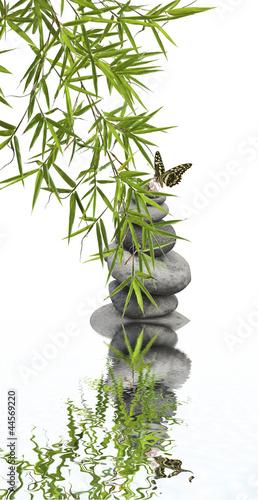 Fototapeten,natur,zen,entspannung,bambus