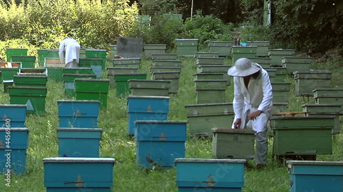 Beekeepers at work