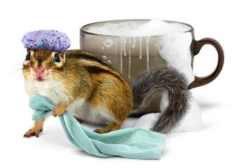 Funny chipmunk taking a bath