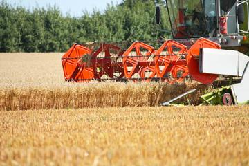 Mähdrescher - Combine Harvester