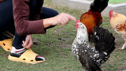 Woman who plays with the rooster