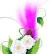 Sparkling pink floral frame