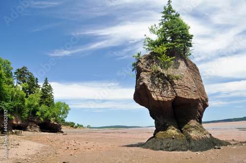 Hopewell Rocks at low tide, Fundy bay (Canada)